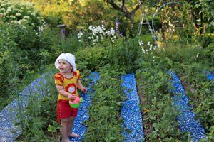 Девочка на садовой дорожке - междугрядка